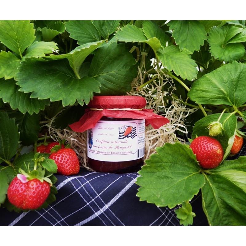 fraise en pot les fraisiers suspendus les petites croix de nicolbrod comment faire pousser des. Black Bedroom Furniture Sets. Home Design Ideas