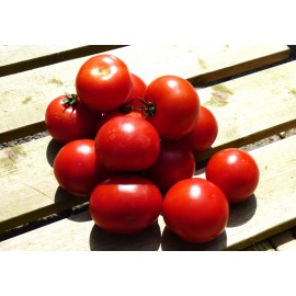 TOMATES RONDES 1kg